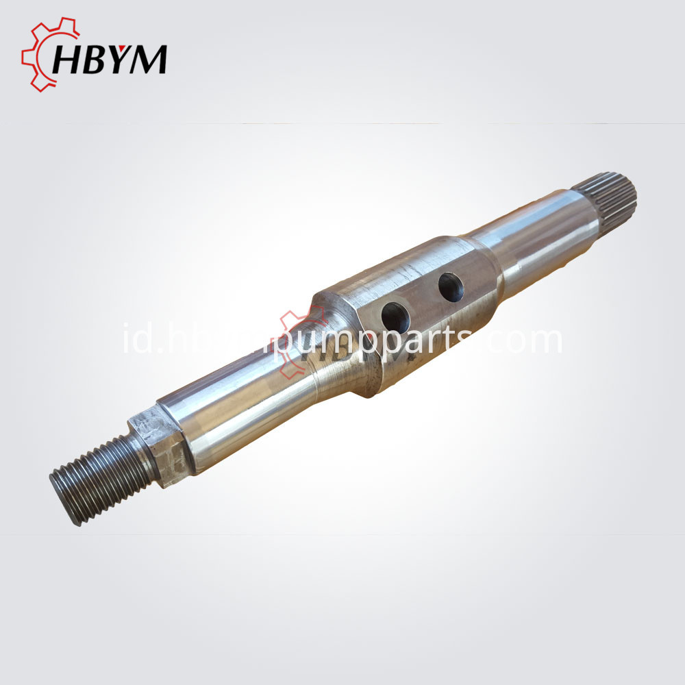 Schwing Slewing Shaft 02