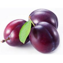 Poudre de Prune / Poudre de Prune Poudre / Extrait de Prune Poudre / Poudre de Concentré de Prune