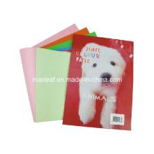 Papel de cor Desenho Presente de livro A5 Sketchbook em branco Diray para desenho Grafite Pintura Sketch Book Escritório Material escolar Notebook
