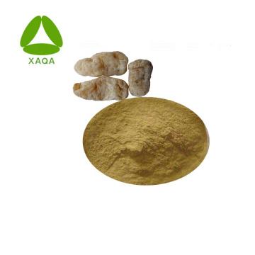 Extrait de Gastrodia Elata en poudre 10:1 Produit de soins de santé