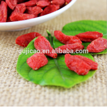 Manufacturer Supply Goji Berry Extract organic goji berries wolfberry medlar