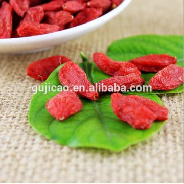 Manufacturer Supply Goji Berry Extract organic goji berries wolfberry medlar