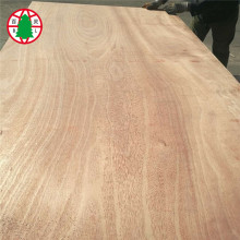 High Quality 4'x8' Hardwood Veneer Laminated Plywood