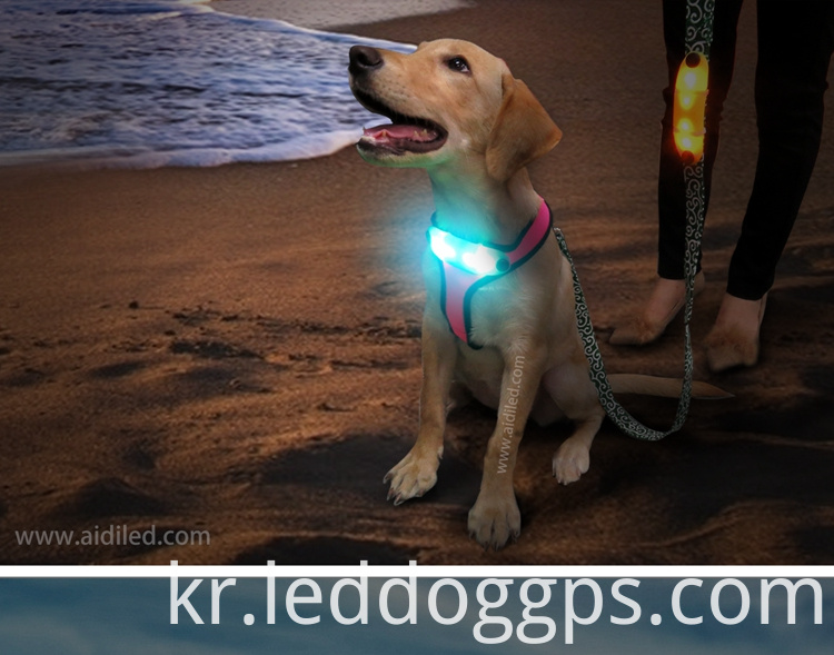 Soft Mesh Led Dog Vest