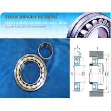 Cylindrical Roller Bearing Nnu4144, N222 Nj222 Nf222 Nu222 Nup222