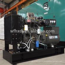 Ventes chaudes 8KW à 140KW ricardo genset avec bon prix