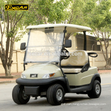 Luxury 2 seater electric golf cart Trojan battery club buggy car golf cart
