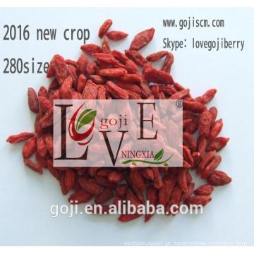 Baga orgânica do goji 2017