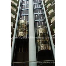 Ascenseur panoramique de cabine extérieure en verre de Srh