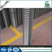 6x6 Beton Memperkuat Welded Wire Mesh