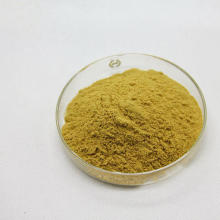 Bitteres Melonenextraktpulver