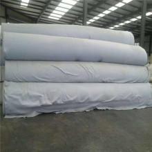 Polyester Non-woven Geotextile Fleece