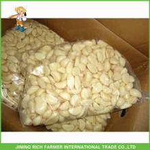 Marktpreise für Shandong frisch geschältes Knoblauch