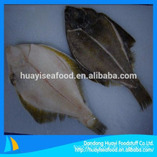 manufacture of new fishing frozen flounder fish