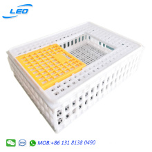 large size plastic transport crate for birds small poultries quail