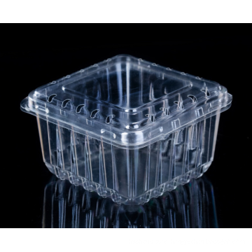 Strawberry Plastic Container Fruit Packaging