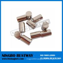 China 100 Mmm N52 Neodymium Cylinder Magnet Generators