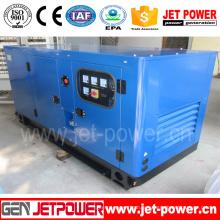 Chine fournir générateur diesel insonorisé de Weifang Ricardo avec l'ATS