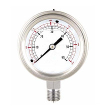Pressure Gauge (YTN-100)