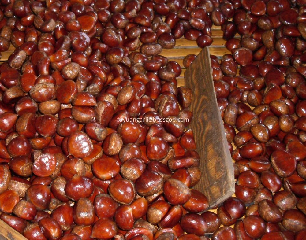 Dandong Chestnut