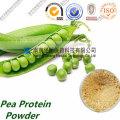 Fabrication de poudre de protéines de pois bio non-Gmo