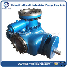 W. V Multi-phase Heavy Oil Double Screw Pump