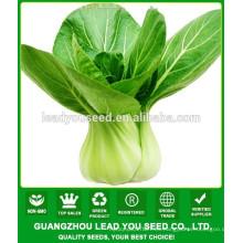 NPK06 Qinggu Buena calidad fábrica de semillas pak choi para el cultivo