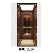 Villa Elevator with Wooden and Titanium Finished Stainless Steel (KJX-BS04)
