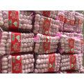 Pure white garlic 5P*16/5P*12 mesh bag China Jinxiang fresh garlic