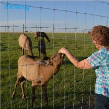 Factory  Galvanized Deer Farm Fence for Sale