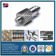 Fabricación de engranajes de acero inoxidable del proveedor de China (WKC-108)