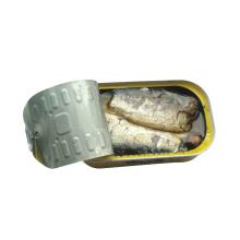 Sardine en conserve à haute qualité