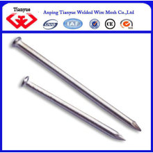 common nail iron nail factory
