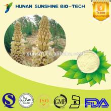 Bester Preis von Cistanche Deserticola PE 10% / 50% / 98% Verbascosid CAS: 61276-17-3