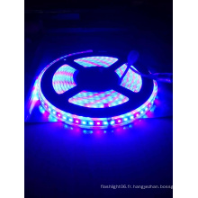 2835 120LED Haute luminosité étanche R: B = 1: 2 Grow Strip