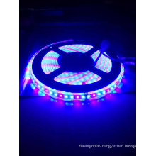 2835 120LED High Brightness Waterproof R: B=1: 2 Grow Strip