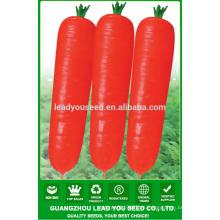Semillas de la zanahoria de Luobo de NCA01 precio plantador de la zanahoria de China