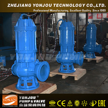 Qw Efficient Sewage Pump