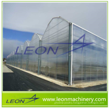 LEON series best selling greenhouse/agricultural greenhouse/plastic greenhouse