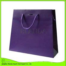 100% Eco-Friendly Custom Printed Paper Bag with Logo Print (DF-195)