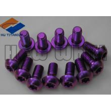 boulon de rotor de disque en titane Gr5 violet M5 * 10