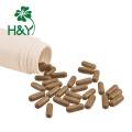 Preço de fábrica 100% natural de folhas de urtiga extrato salus