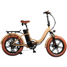 OEM Factory Electric Bike Lithium Power Foldable Electric Bicycle
