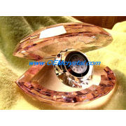 Crystal Shell with Clock (Watch) (OEM-NEW-009)
