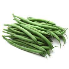 Long green cowpea Asparagus vegetable long yard bean seeds
