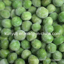 Frozen Green Pea with High Quality