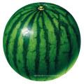 Reguladores de Crescimento Vegetal Made in China