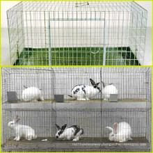 Rabbit farming cage and used rabbit cage for sale in Anping county