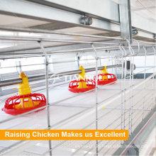 Alimentador automático de sartén de pollo para granja avícola de Pakistán para pollo de engorde