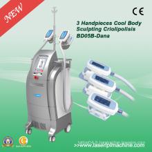 Salon Use Cryo Fat Freeze Cryo Slimming Machine à vendre Bd05b
